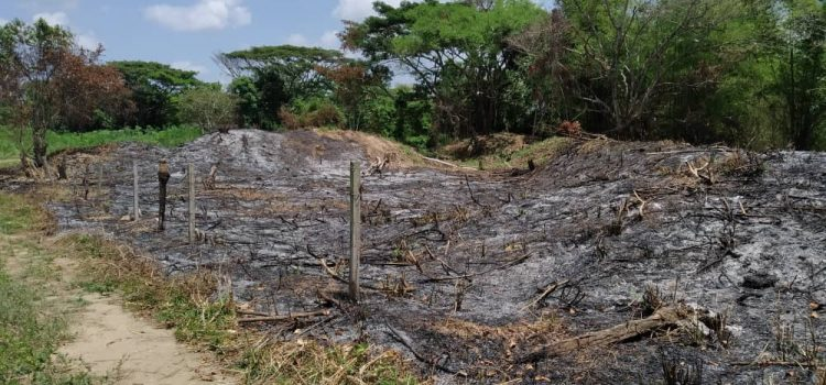 ODH-ULA complains with the Public Prosecutor`s Office about the invasion and destruction of the Judibana Estate